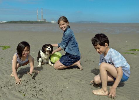 Holly Kingston (five), Kira Kingston (10), and Aidan Maloney (seven), all from Dublin, play on the beach in Sandymount, Dublin, with their dog Max.