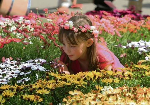 Joan O'Toole (10), from Kilcullen, Kildare, enjoying Bloom in the Park. Picture: Nick Bradshaw