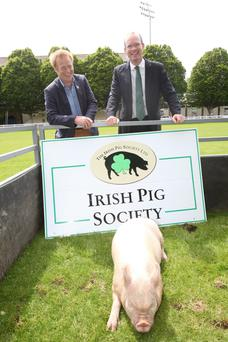 Agriculture Minister Simon Coveney launched the Irish Society Handbook with the help of society chairman Toby Couchman at the RDS yesterday.