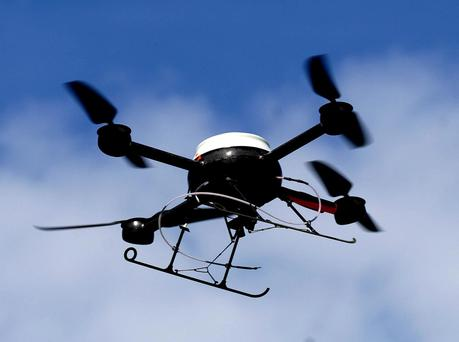 There are about 5000 drones in Ireland at the moment