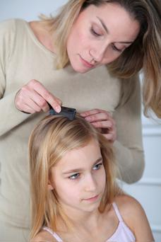 Many schools have sent out letters to parents to warn about lice