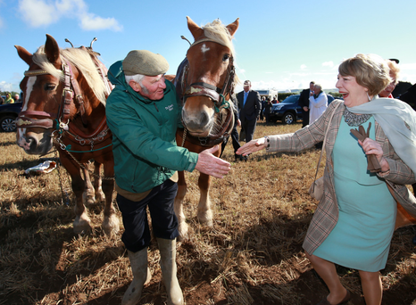 Sabina Higgins meets ploughman Gerry King from Co Louth and his two draught horses Jack and Jill at the National Ploughing Championships at Ratheniksa, Co Laois, yesterday Photo: Frank McGrath