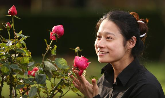 BLOOMS: Amy Chen from Lucan pictured with some of the roses at the Botanic Gardens, Dublin. Photo: Gerry Mooney