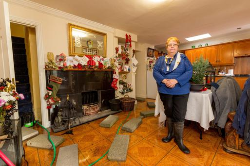 Liz O'Brien at her flooded home in the Kilgainey area of Clonmel, Co Tipperary. Photo: Dylan Vaughan