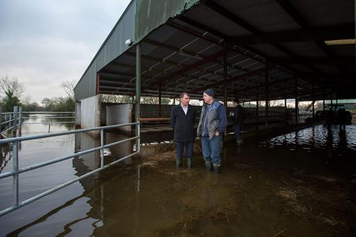 Irish Creamery and Milk Suppliers' Association president John Comer (left) visits Paudie Ryan (right) in Clonlara, Co Clare. Photo: Sean Curtin/Fusionshooters