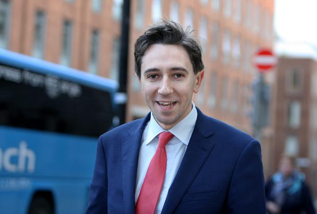 Fine Gael's Simon Harris, who is opposed to a 50pc rise in the minimum wage