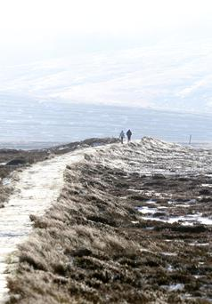 A couple walks in the Dublin Mountains near Kilakee. Photo: Colin Keegan