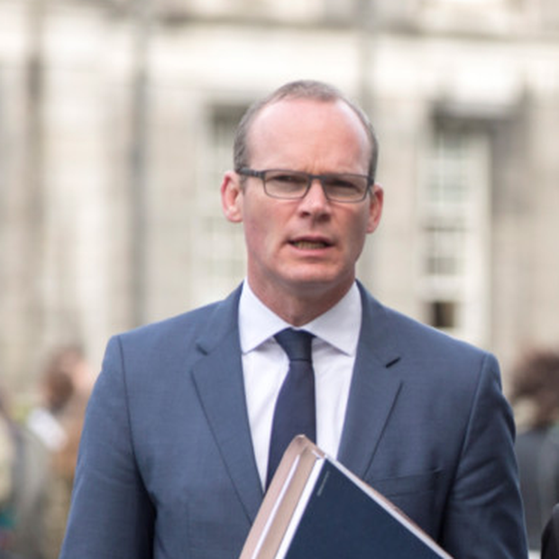 Simon Coveney. Photo: Mark Condren