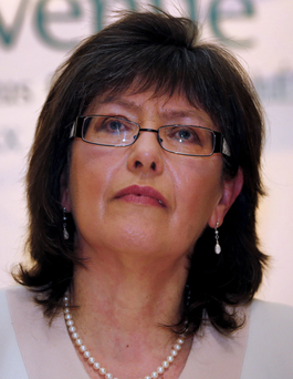 The chair of the Policing Authority, Josephine Feehily