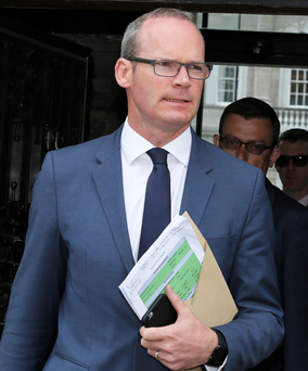 Housing Minister Simon Coveney Photo: Tom Burke