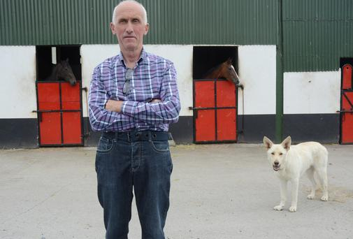 Horse trainer Tom Cleary pictured at his stables in Carrickobrien which was badly hit by last year's Shannon flooding