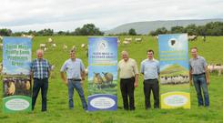 Members of Mayo's Sheep group's Pat Waldron (South Mayo Lamb Producers), John Noonan, (Mayo Mountain Blackface Sheep Breeders), Tom Staunton, (Mayo Mule and Grayface Group) Stephen Lally (Mayo Mountain Blackface Sheep Breeders) and John Flannery (Mayo Mule and Grayface Group).