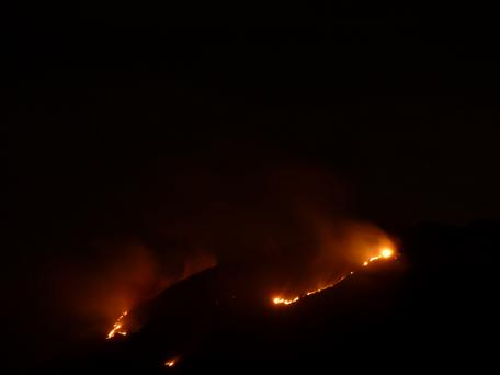 A gorse fire in Bray from last weekend. Photo: Oskars Rozentals