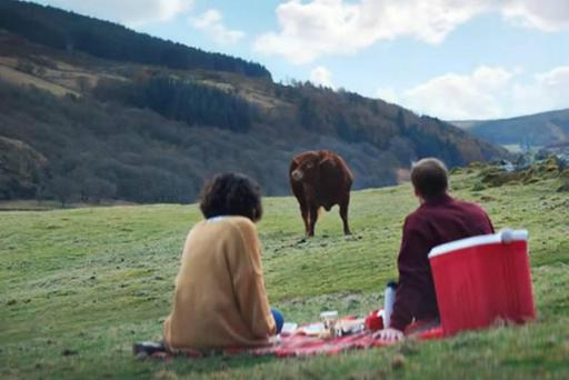 Vodafone's bull ad was found in breach of advertising codes
