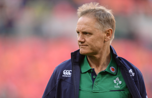 Ireland rugby coach Joe Schmidt Picture: Sportsfile