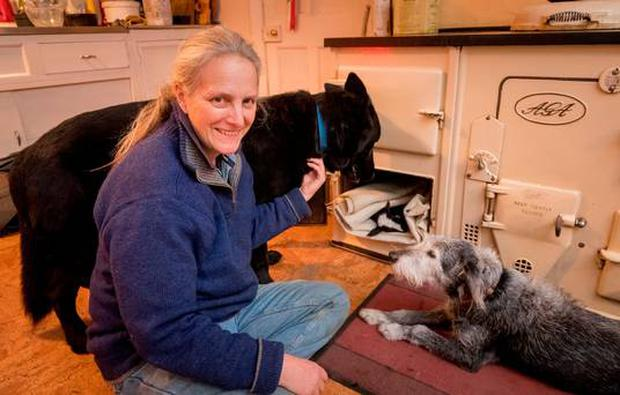 Suzanna Crampton in the kitchen of her home in Bennettsbridge, Co Kilkenny, with her lamb Teeny Tiny, which she is keeping warm in the oven, watched by her dogs, Big Fella and Pepper. Photo: Dylan Vaughan