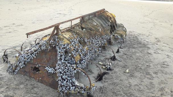 The boat believed to have been used by Cuban refugees that washed up in Co Sligo Photo: Gordon Fallis