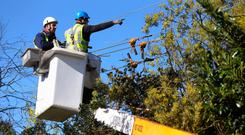 ESB staff work to repair power lines. Photo: PA