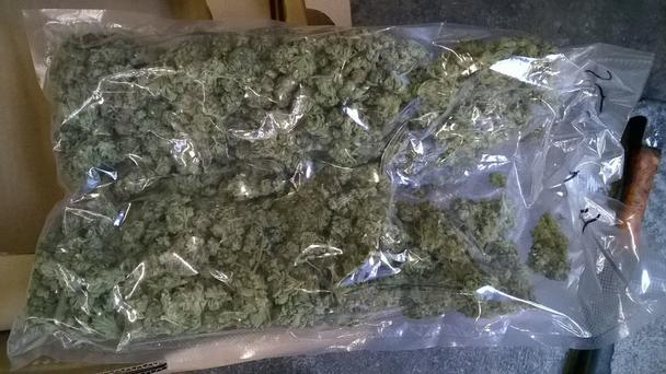 The cannabis recovered by customs and gardai