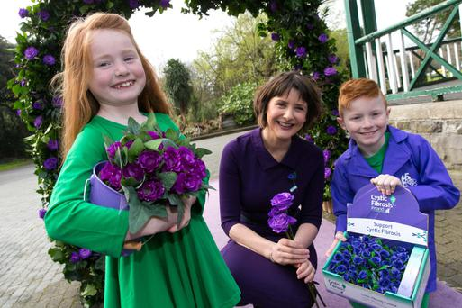 Tending carefully to the purple roses on display at the launch of the appeal in Dublin's Herbert Park was Cystic Fibrosis Ireland ambassador, RTÉ presenter, Keelin Shanley, who was joined by brother and sister Tom and Jessica Cassidy, from Co Meath, both of whom have cystic fibrosis.