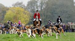 Fox hunting with dogs has been outlawed in the UK since 2004. (Stock photo- John Giles/PA)