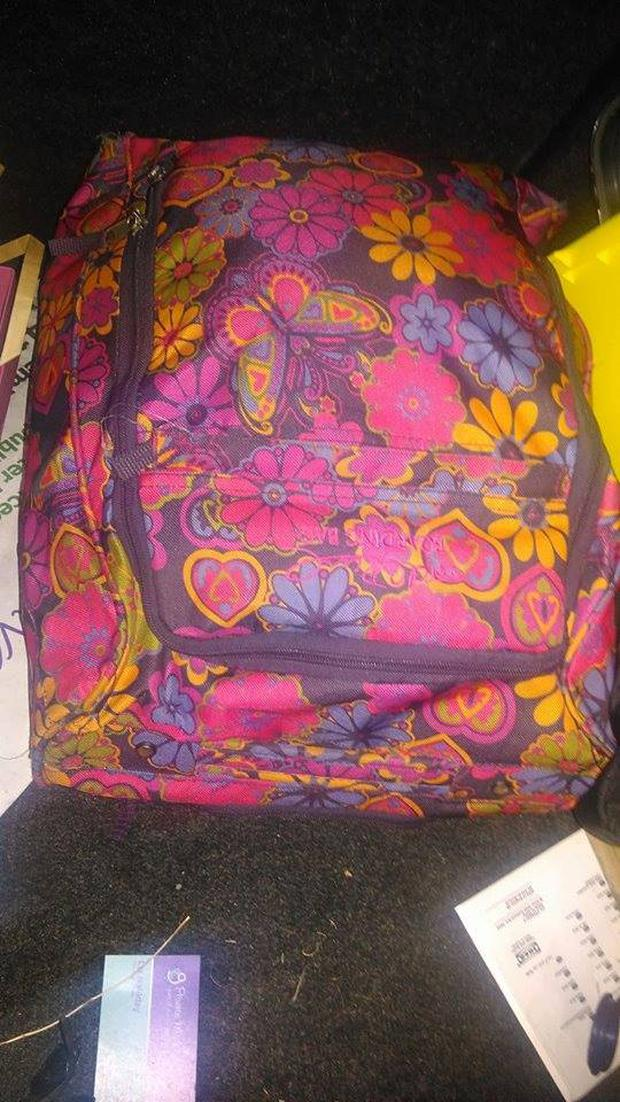 An image of one of the suitcases stolen from the car