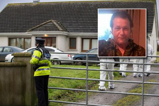 The victim, who was named locally as Bruno Rolandi, was discovered with a number of knife wounds at a house in Co Offaly on Sunday night.