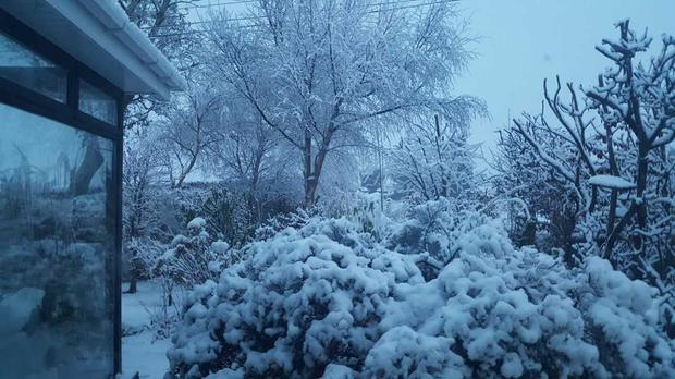 Wexford covered in snow on Sunday morning Photo: Michael Jordan