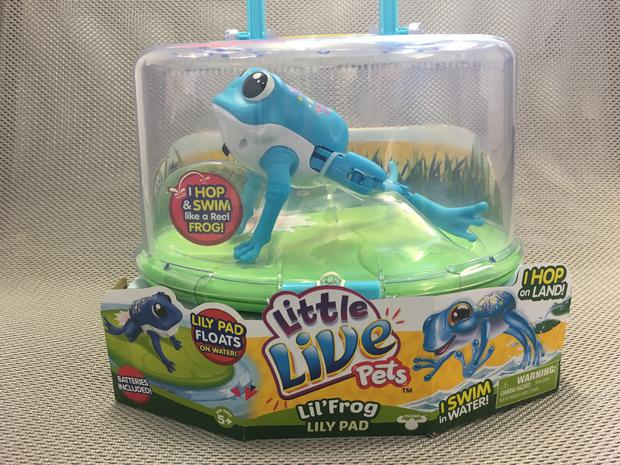 'Lil Frog & Lil Frog Lily Pad' toy that was recalled