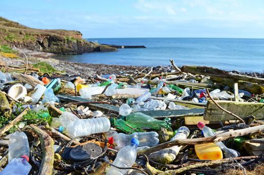 Stark message: Plastic bottles and other rubbish washed up in Co Cork. Photo: Education Images