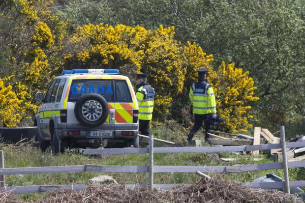 Gardai and the Defence Forces launch a search in Enniskerry today Photo: Colin O'Riordan