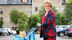 DISPUTE: Barbara Seligman with her 14-year-old miniature Pomeranian Topaz, and the doggy buggy in which Topaz travels. Photo: Frank McGrath
