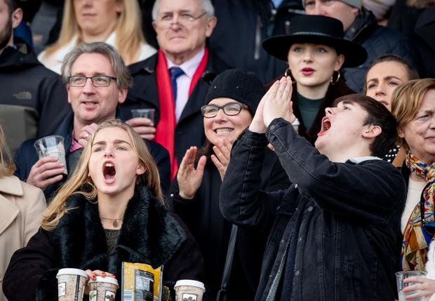 Thrills: Fans enjoy the highs and lows of the first day at Leopardstown. Picture: INPHO/Morgan Treacy
