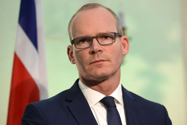 Tánaiste Simon Coveney. Picture: Justin Farrelly