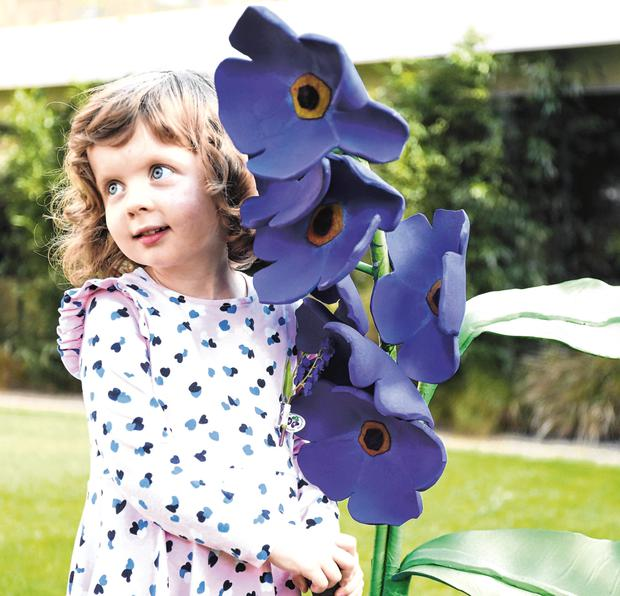 Sadhbh Browne (age 4) from Mountbellow, Co Galway who is waiting for a liver transplant