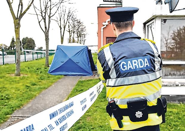 Gardai at the scene of the fatal stabbing at Castlecurragh Heath in Mulhuddart. Pic Steve Humphreys