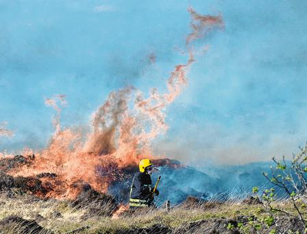 Firefighters attempt to contain the huge blaze that has consumed hundreds of acres of gorse moor in Donegal. Photo: Pacemaker Belfast