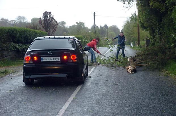 Motorists clear the roadway after a fallen tree blocked the main Killarney to Dingle road at Aghadoe, Killarney during the height of Storm Hannah on Friday evening. Photo: Don MacMonagle