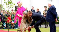 King Willem-Alexander and Queen Máxima from the Netherlands plant a tree at Áras an Uachtaráin, watched by President Michael D Higgins and his wife Sabina. PHOTO: PAUL FAITH/AF