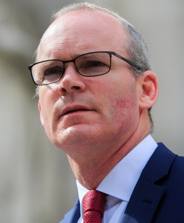 Calm: Simon Coveney