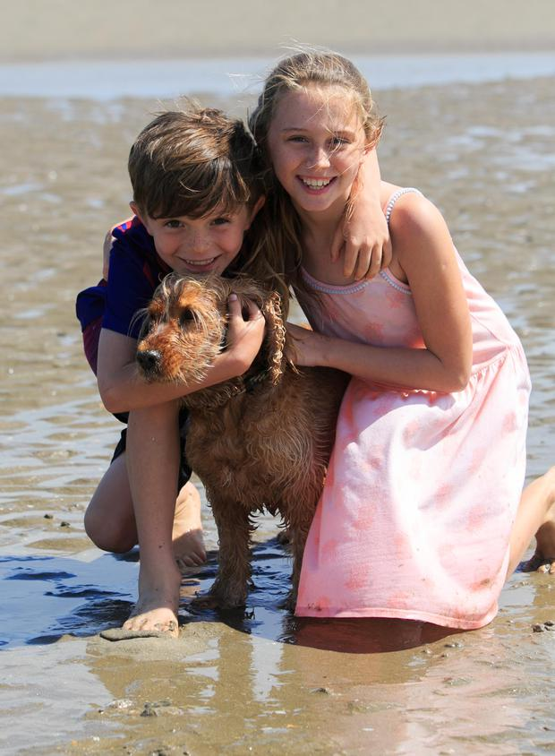 Ben (7) and Lola Carr (10) and dog Molly enjoy the weather. Picture: Collins
