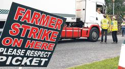 Picket: Farmers talk to a driver at Kepak in Clonee, Co Meath. PHOTO: FRANK McGRATH