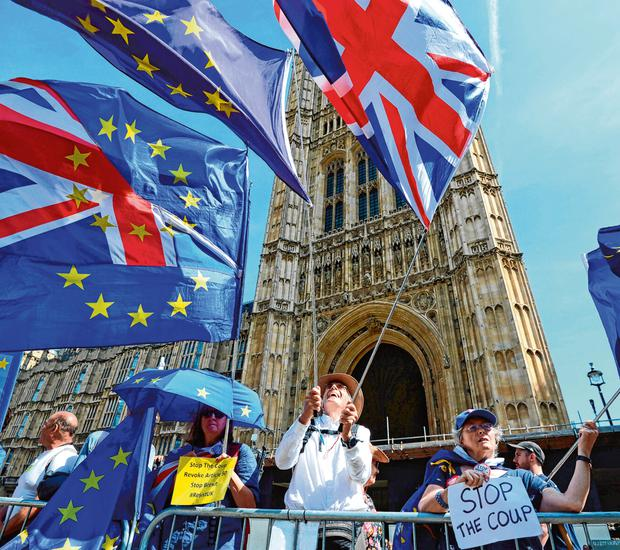 Making a stand: Brexit protesters outside the Palace of Westminster in London yesterday. Photo: PA wire