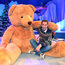 Grin and bear it: Ryan Tubridy and a giant furry friend in rehearsals. Photo: Steve Humphreys