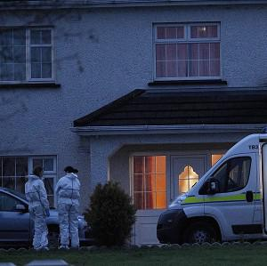 John Kerins was found shot dead at his home in Co Cavan last November