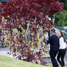 A tree with messages on it in the grounds of the church at the funeral of Olivia Burke. Photo: Colin Keegan