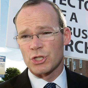Simon Coveney: was not behind wheel