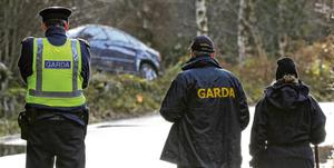 Gardaí keep watch over a car on the Laragh to Rathdrum road. Picture: Garry O'Neill