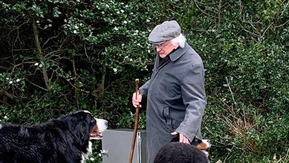 President Higgins with Bród and his new companion Misneach. Photo: James_MacX/Twitter.