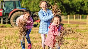 Fun in the sun: Sisters Maeve (6), Emily (3) and Alison Armitage (8), from Ballyfin, Co Laois, play with straw before ploughing starts in Fenagh. Photo: Gerry Mooney